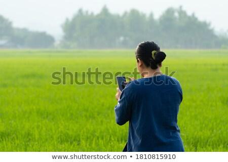 Női gazda áll búzamező mobiltelefon érett Stock fotó © stevanovicigor