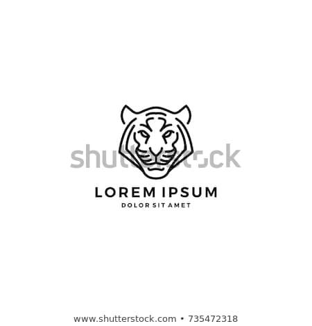 Tigris ikon természet vad dzsungel vadászat Stock fotó © Olena