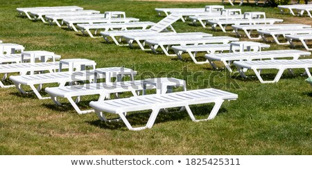 Empty white sun lounger on grass Stock photo © IS2