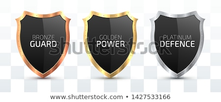Shield isolated. Knights iron Protection. Vector illustration Stock photo © MaryValery