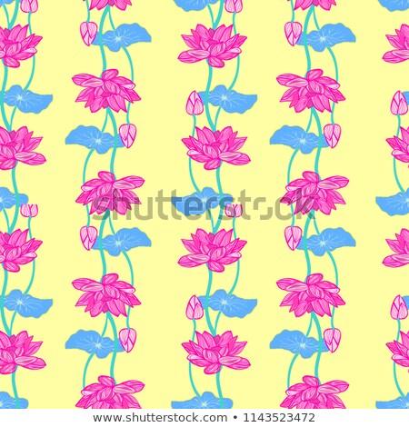 Botánico patrón vector dibujado a mano hermosa Foto stock © Margolana