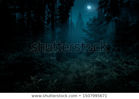 Autumn landscape with full moon Stock photo © kostins