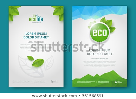 Eco brochure design vector template. Corporate poster with green leaves Stock photo © Natali_Brill