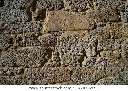 Granitu kamień Bush kamieniarstwo ściany Zdjęcia stock © lunamarina
