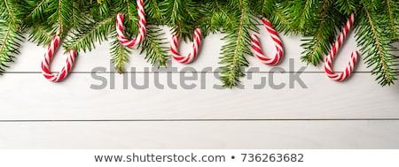 Christmas candy canes on wood Stock photo © karandaev