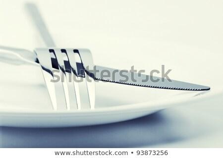 bıçak · çatal · beyaz · arka · plan · Metal - stok fotoğraf © inxti