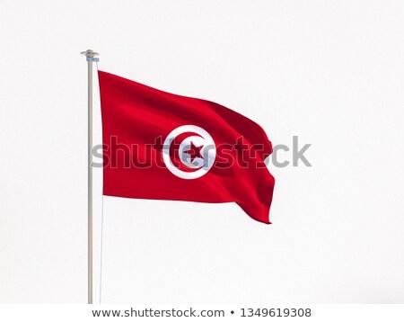 Tunisian flag isolated on white Stock photo © daboost