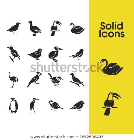 Espíritu animales avestruz ilustración hombre fondo Foto stock © bluering