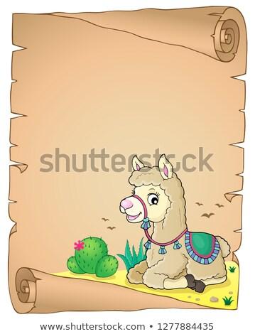 llama · ilustración · blanco · granja · animales · Cartoon - foto stock © clairev