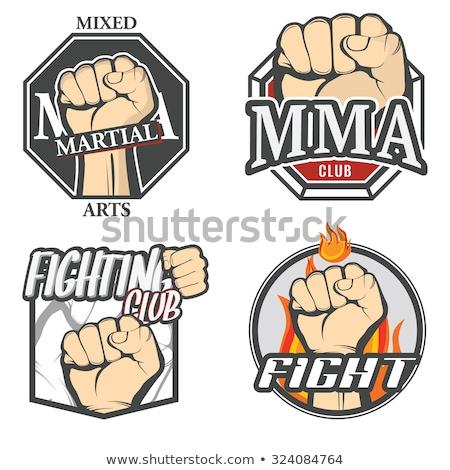 Stock photo: Color vintage fight club emblem