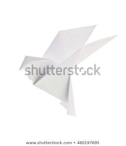 Origami kuş beyaz örnek arka plan sanat Stok fotoğraf © colematt