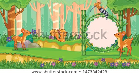 A zebra in bamboo forest Stock photo © colematt