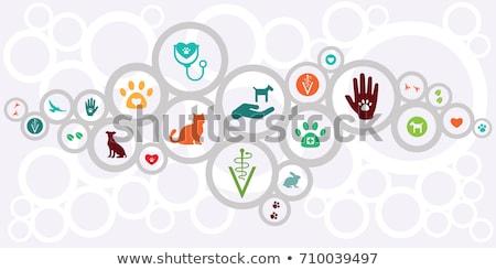Vet clinic concept banner header Stock photo © RAStudio