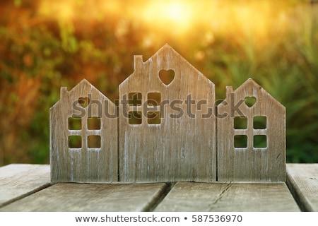 Fantasie land huizen ingesteld huizen geïsoleerd Stockfoto © cidepix