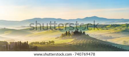 Tájkép - olaszország fa természet nyár Stock fotó © wjarek