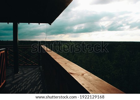 Distant Clouds with Logs Close Up Stock photo © jameswheeler