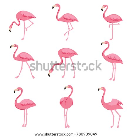 Pink flamingo set of objects. Isolated on white background. Vector illustration. Stock photo © lucia_fox