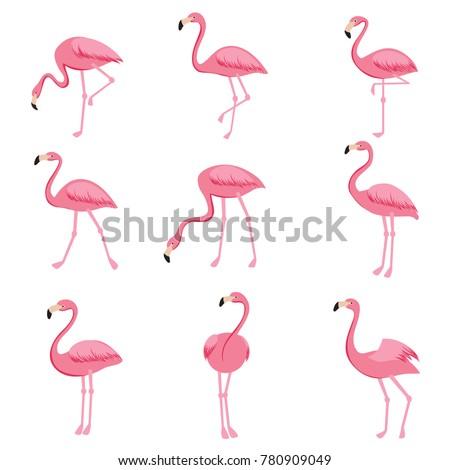 Rosa flamingo conjunto objetos isolado branco Foto stock © lucia_fox