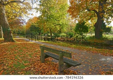 Charakteristisch Herbst Szene Blätter Fluss Stock foto © Melvin07