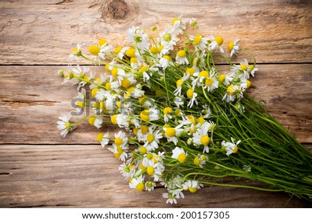Stock photo: Dried and fresh chamomile flowers and leaves on wooden rustic background, alternative medicine