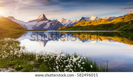 Great view of Bernese range above Bachalpsee lake. Location Swis Stock photo © Leonidtit