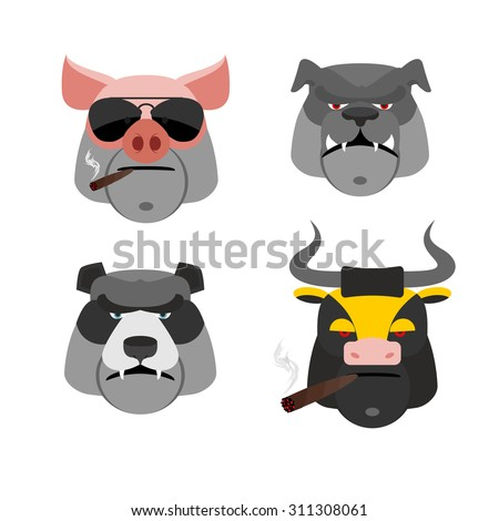 Stockfoto: Set Of Angry Animals Head Of A Pig And Bull Bad Bear And Bull
