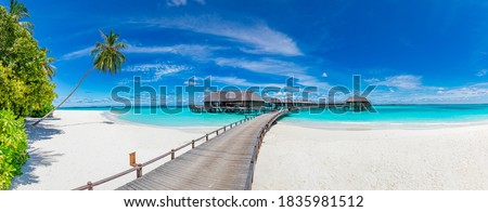 Sand beach with palm and chaise lounge, clear blue water, summer paradise Stock photo © MarySan
