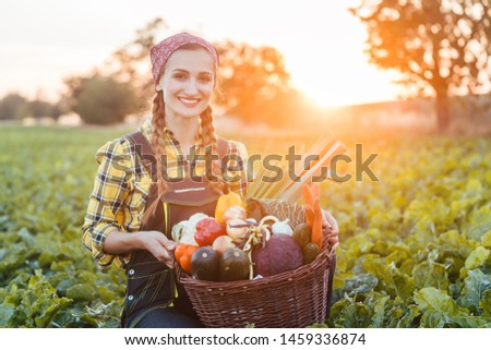farmer woman in the country going to market with vegetable basket stock photo © kzenon