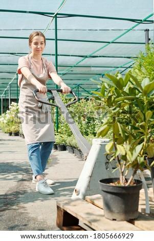 mulher · em · pé · estufa · retrato · árvore · jardim - foto stock © pressmaster