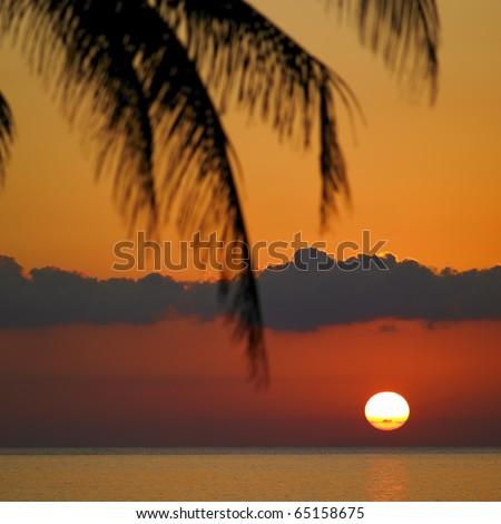 sunset over caribbean sea maria la gorda pinar del rio provinc stock photo © phbcz