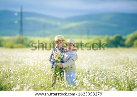 Stock photo: Rural scene of two brothers on a walk in a meadow while collecting daisies