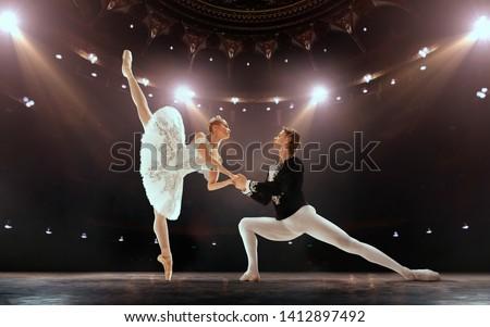 小さな バレリーナ ポーズ ダンス クラシカル バレエ ストックフォト © boggy