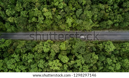 Top view of the road Stock photo © olira