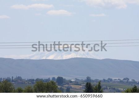 Ganado rancho montana exuberante Foto stock © cboswell