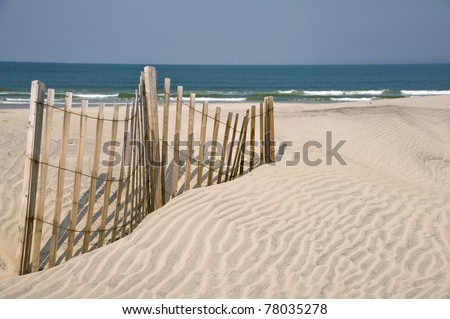 dunes fencing along outer banks of north carolina in cape hatter Stock photo © alex_grichenko