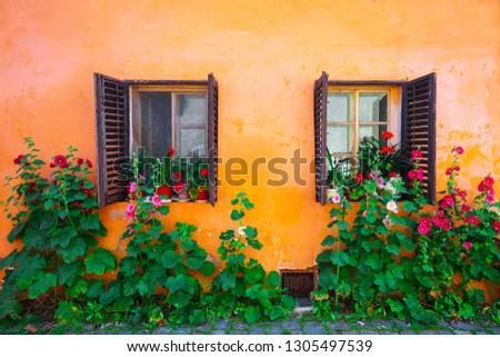 Stok fotoğraf: Pembe · pencereler · çiçekler · şehir · eski