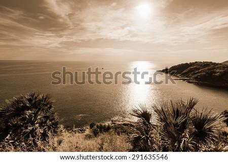 deniz · akşam · yüksek · nokta · orman · görmek - stok fotoğraf © yongkiet