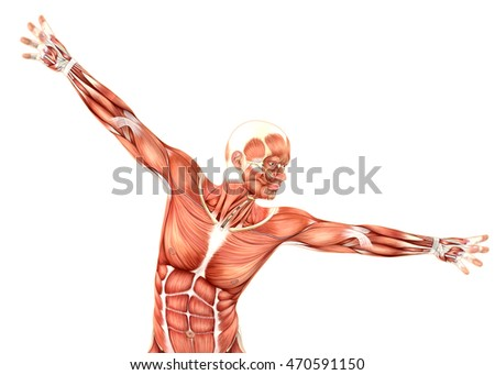 3D male medical figure showing shoulder abduction and horizontal Stock photo © kjpargeter