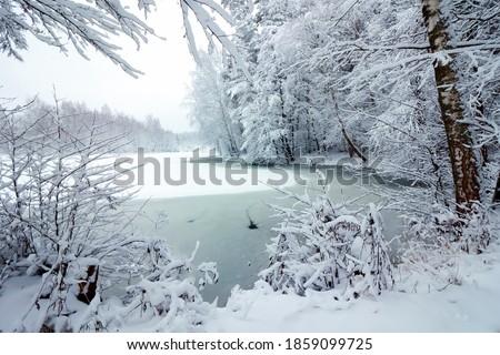 bateau · hiver · gel · glace · congelés · lac - photo stock © fesus