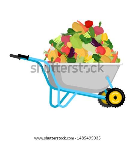 Kruiwagen komkommer groenten tuin groot oogst Stockfoto © popaukropa