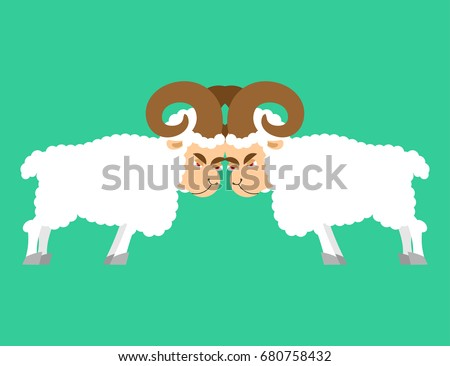 Sheep to butt. Confrontation beast. Competition of male ram. Bat Stock photo © popaukropa
