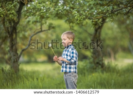 six year old boy in a birch forest in full growth in the spring a child licks a large lollipop stock photo © elenabatkova