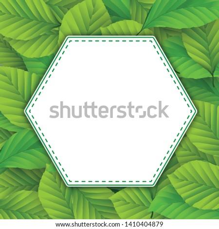 Altıgen amblem yeşil yaprakları kapak beyaz Stok fotoğraf © limbi007