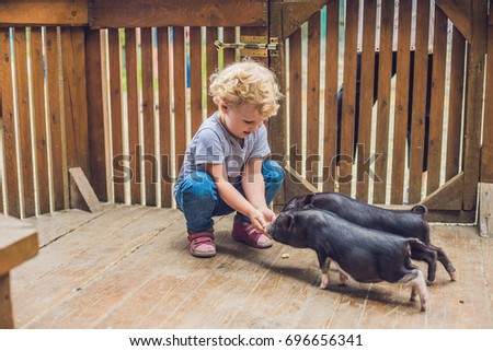 toddler girl caresses and feeds pig piglet in the petting zoo. concept of sustainability, love of na Stock photo © galitskaya