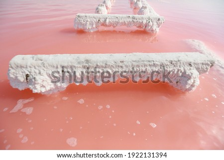 Wooden pillars of the destroyed bridge stick out of the natural red water in the place of salt extra Stock photo © ElenaBatkova