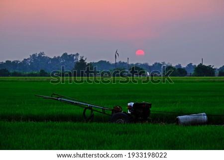 машина ходьбе трактора зеленый риса фермы Сток-фото © galitskaya