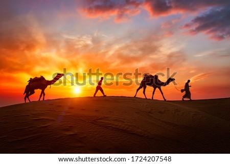 Cameleers, camel Drivers at sunset. Thar desert on sunset Jaisal Stock photo © cookelma