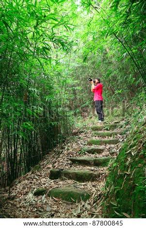 Photographer Taking Photo In Bamboo Path Foto d'archivio © cozyta