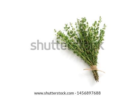 Thyme fresh herb Stock photo © Masha