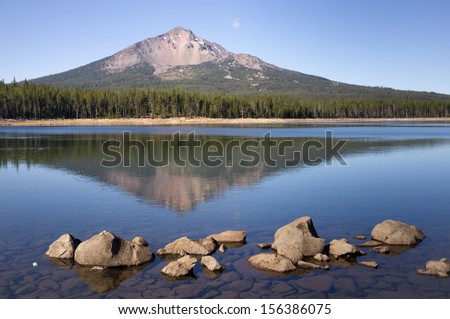 perfeito · lago · velho · árvore · floresta - foto stock © cboswell